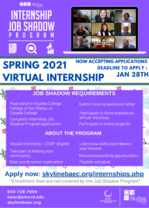 Virtual Internship Program Flyer