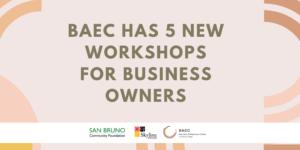 BAEC Workshops